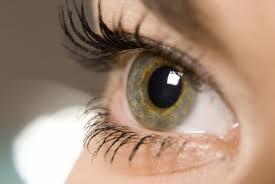 eye side view2